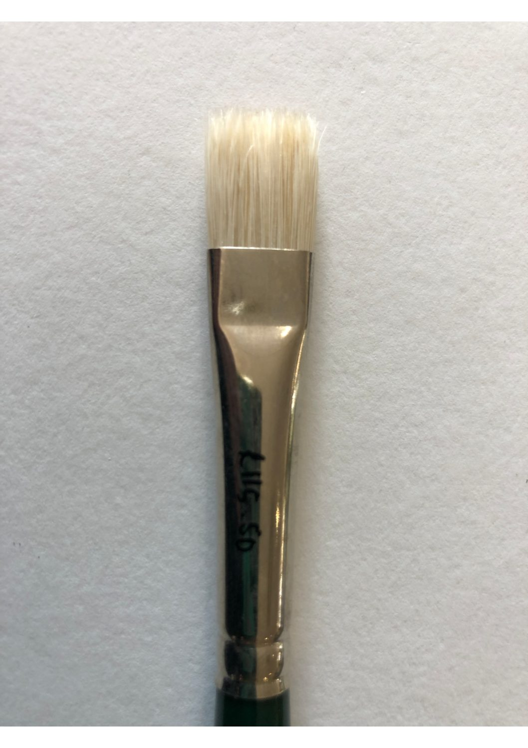 Eve Bristle Brushes